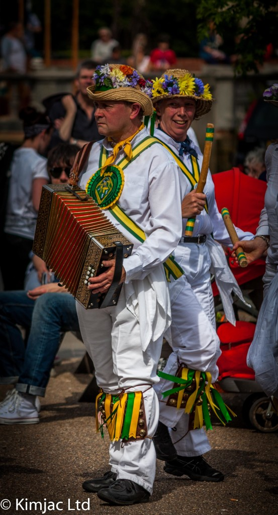 Kingston Morris Accordion Player